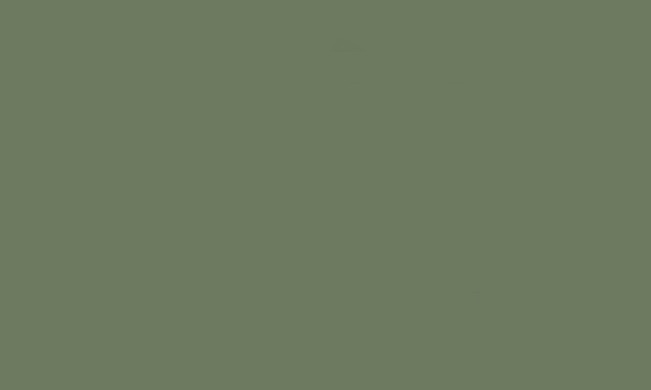 Image gallery light olive green for What colour matches olive green